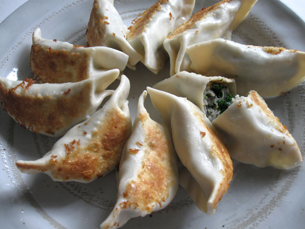 Kale_Chicken_Gyoza